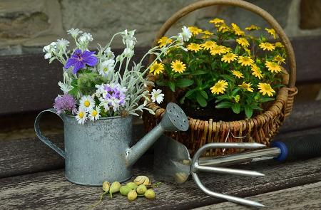Garten gestalten: Blumentöpfe & Gartenzubehör