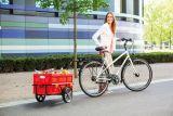 Andersen Fahrradkupplung A1 EasySnap