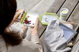 emsa Clip & Go Yoghurtbox mit Knickecke 0,6l